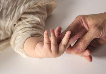 赤ちゃんサイン6月20日27日開催決定!